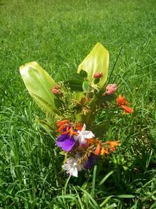 Nick's flowers