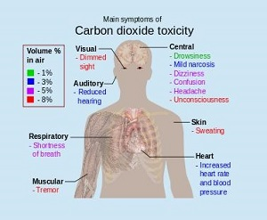 Carbon dioxide toxicity (2) -300
